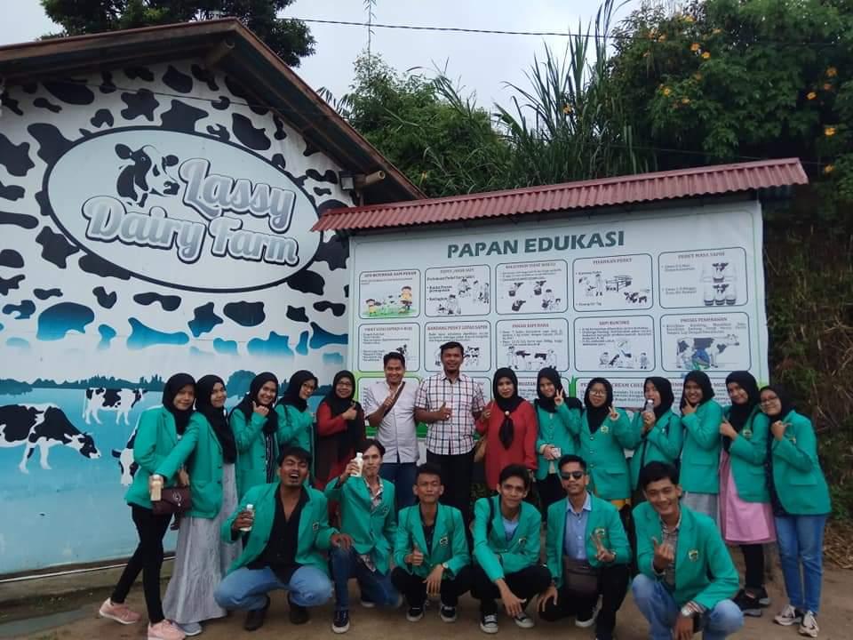 Mahasiswa kunjungi Lassy Dairy Farm