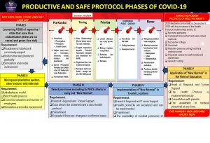 Productive and Safe Protocol Phases of Covid-19
